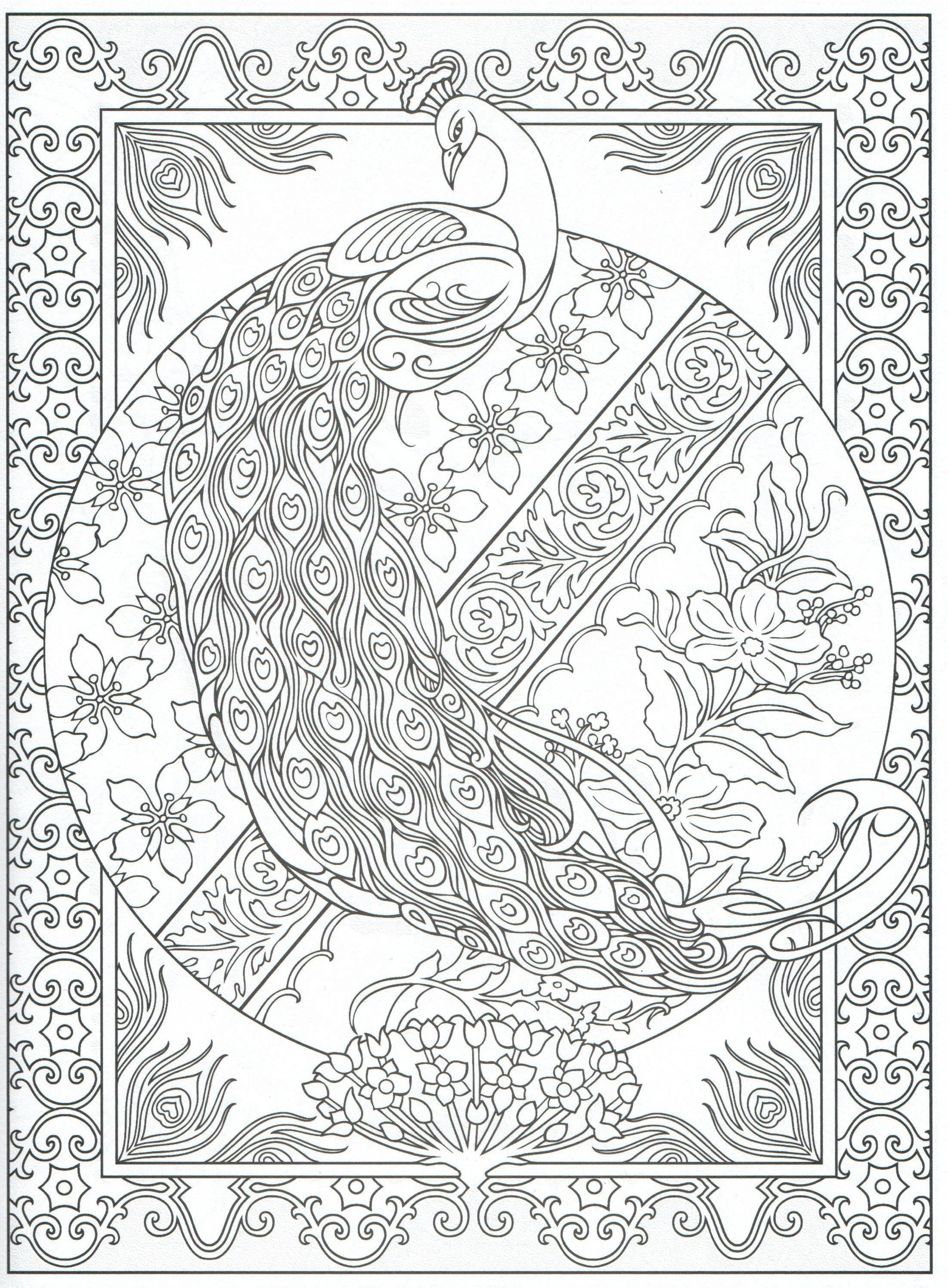 Peacock Coloring Page For Adults 2 31