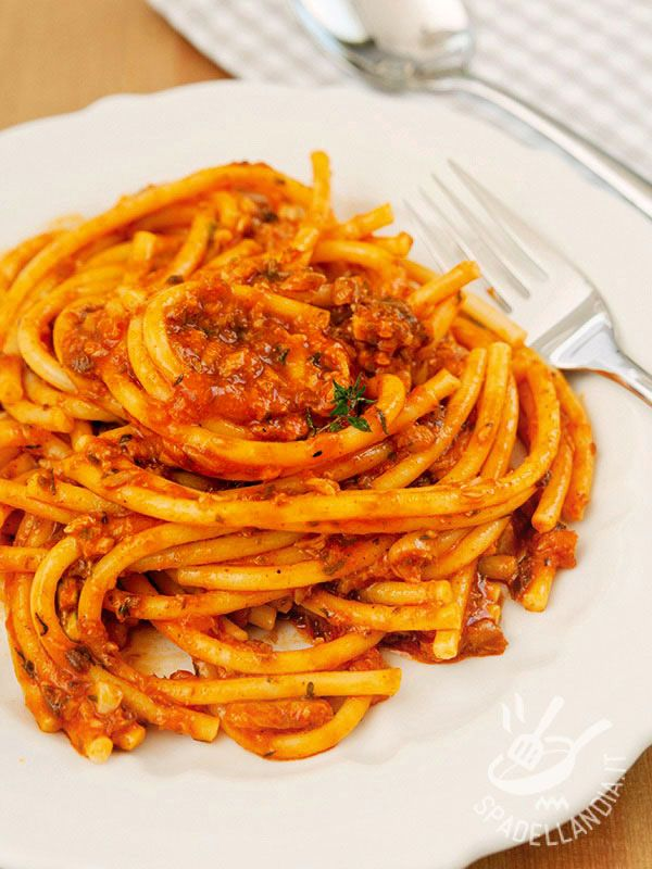 Bucatini Al Ragu Di Polpo Ricetta Idee Alimentari Ricette Cibo Vegetariano