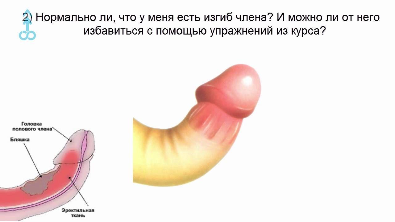 s-pomoshyu-minet-mozhna-uvelechi-polevoy-organ-chlen
