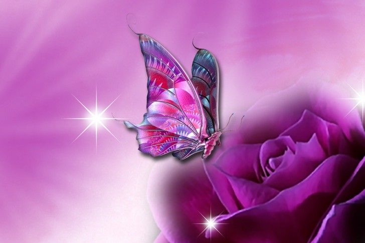 Purple Rose And Butterfly Shades Of Purple Pinterest Purple