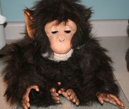 Hasbro Fur Real Friends Plush Interactive Baby Chimp