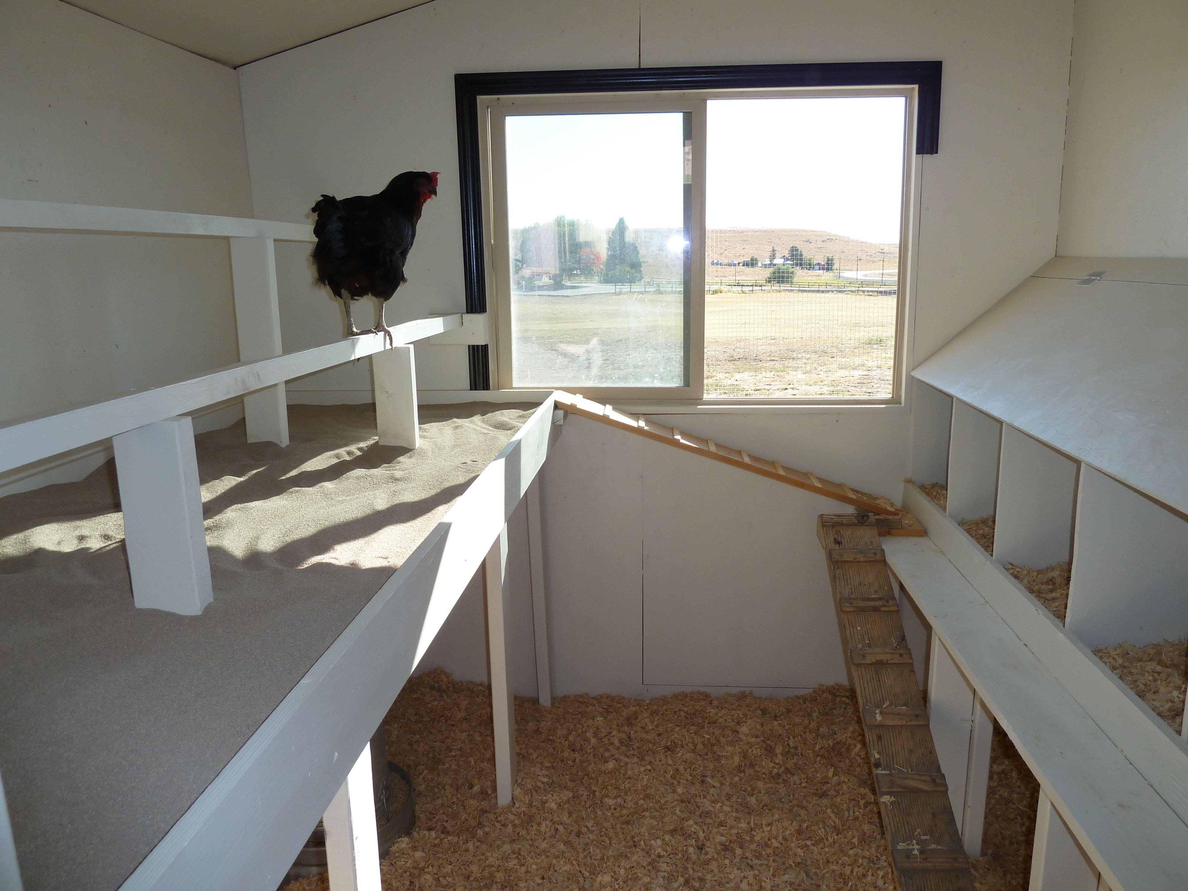 Inside Chicken House chicken coop 059 | raising chickens | pinterest | coops