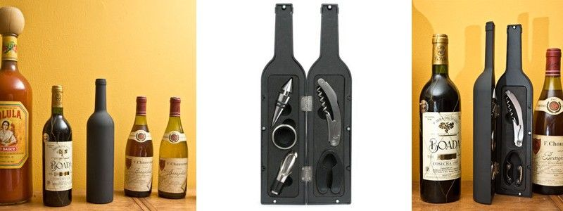 This is really cool.  wine bottle wine kit