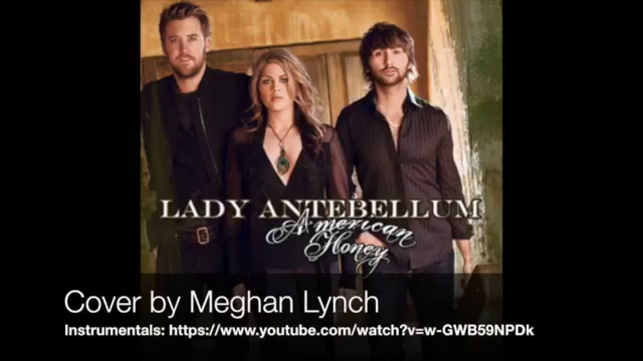 American honey lady antebellum cover by meghan lynch cover songs