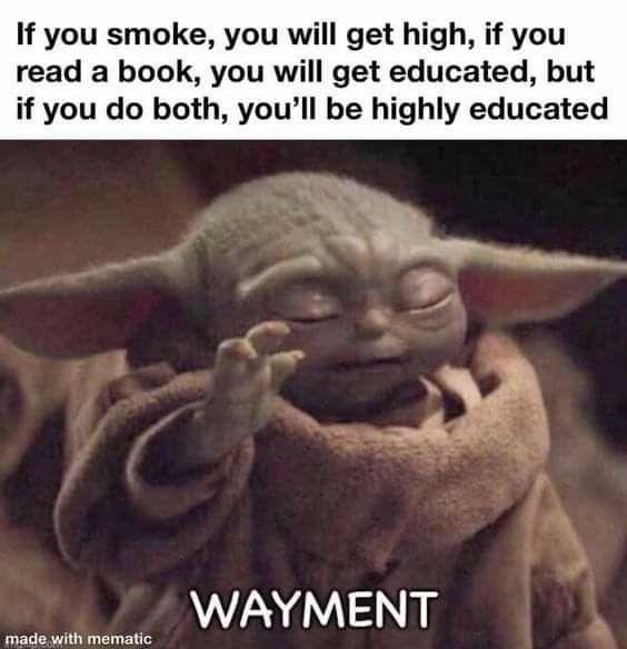 Pin By Michaela Darr On Baby Yoda Yoda Funny Yoda Meme Crazy Funny Memes