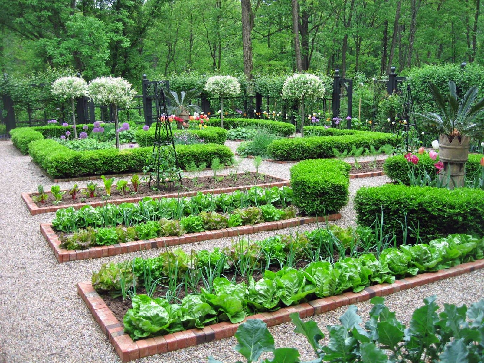 A potager is the French term for an ornamental vegetable or kitchen ...