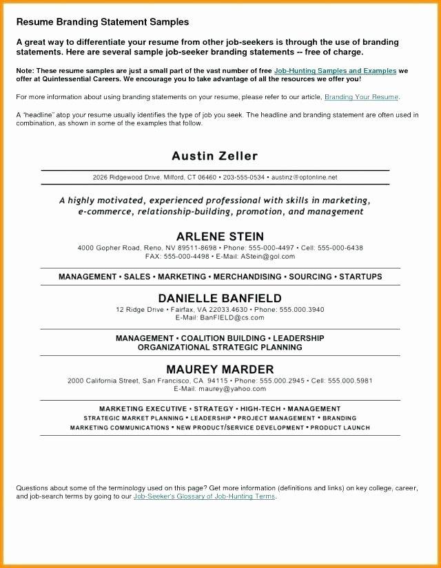 Resume Introductory Statement Example Best Of Curriculum Vitae