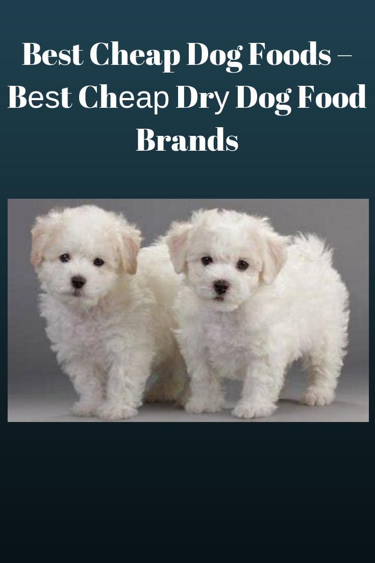 Best Cheap Dog Foods Beѕt Chear Dru Dog Food Brands Pets Care Tips Best Cheap Dog Food Dog Food Brands Cheap Dog Food