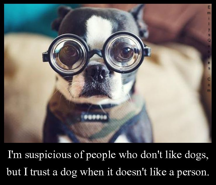 I'm suspicious of people who don't like dogs, but I trust ...