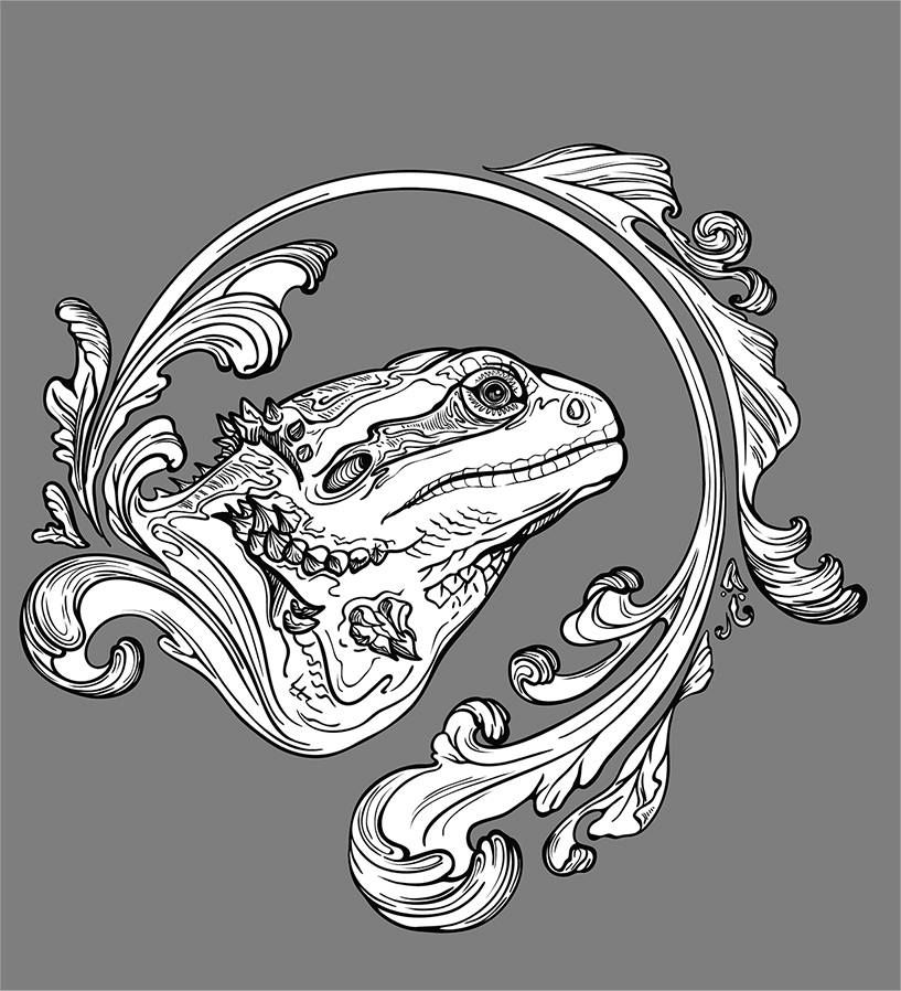 How To Draw A Bearded Dragon Head