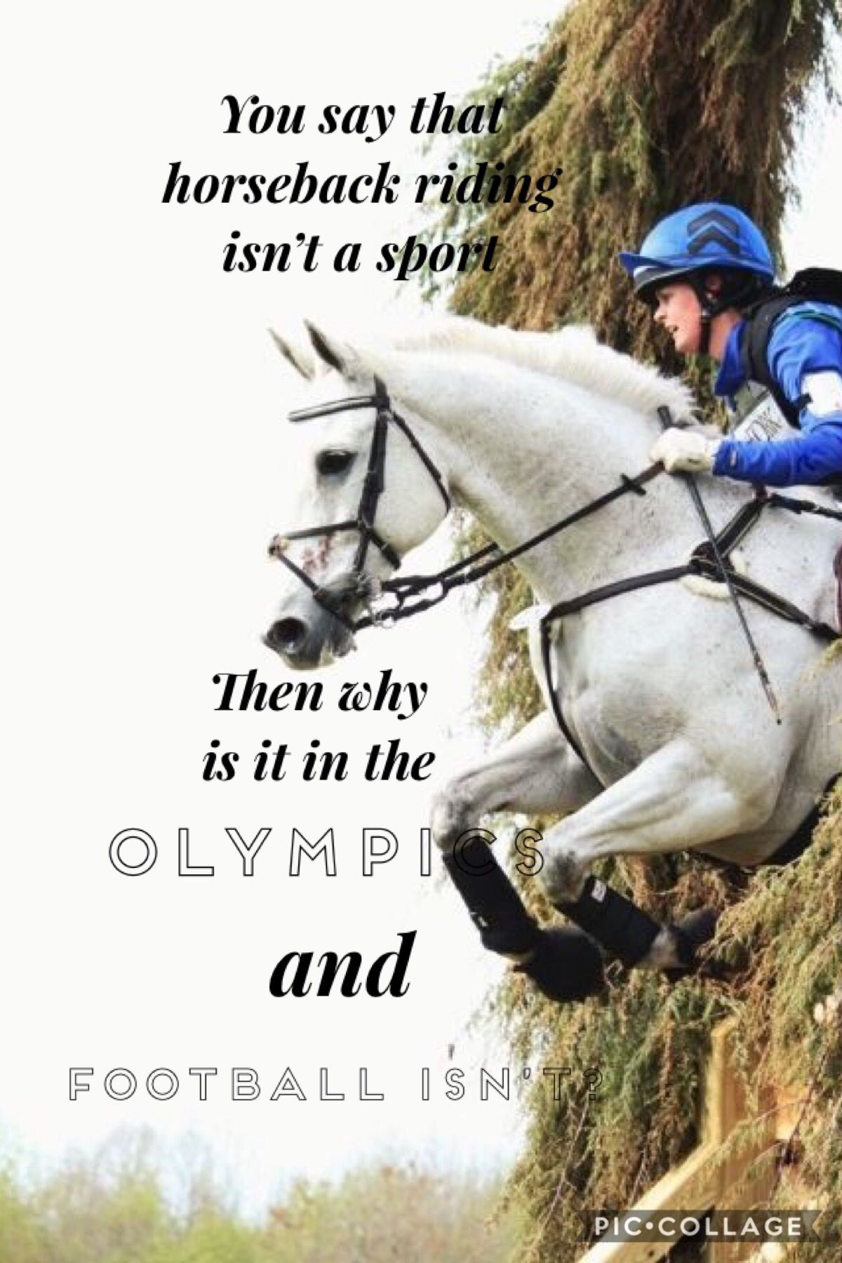 In Your Face Vince Equestrian Quotes Horse Riding Quotes Inspirational Horse Quotes