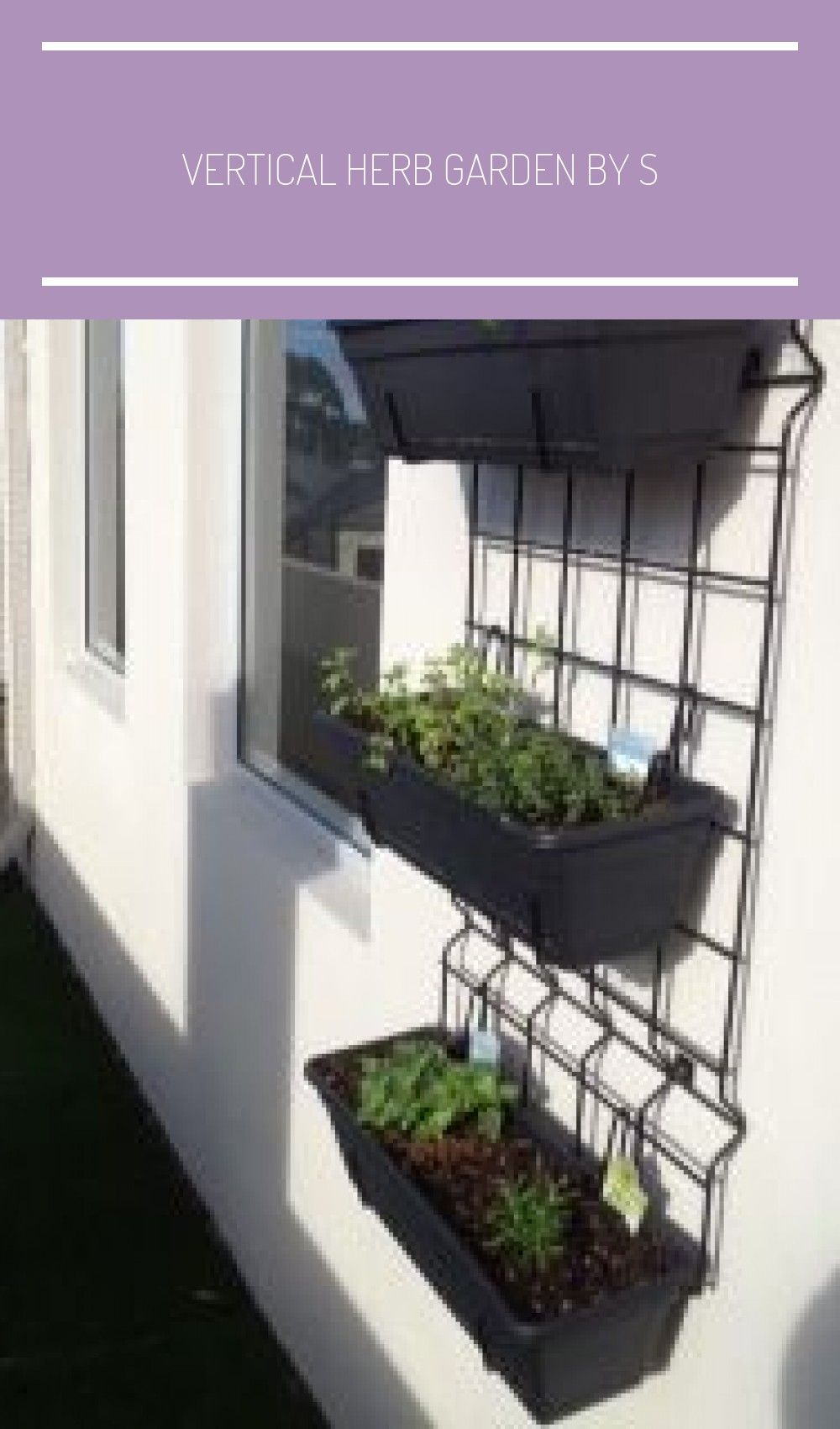 Vertical herb garden by S Vertical herb garden, Herb