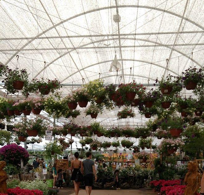 Garden Center, Garden, Family Garden