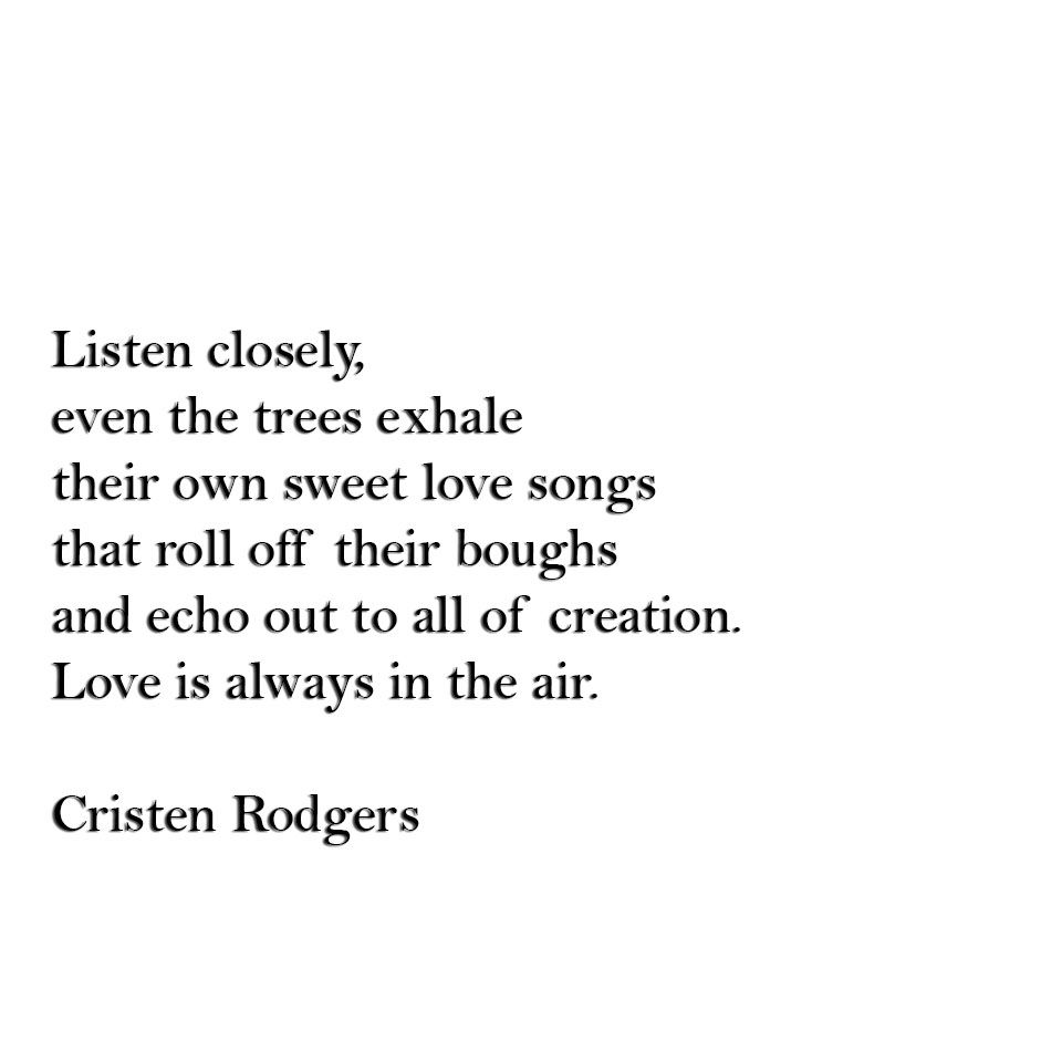 Love Poems Love Quotes Mother Nature Trees Love Songs Cristen