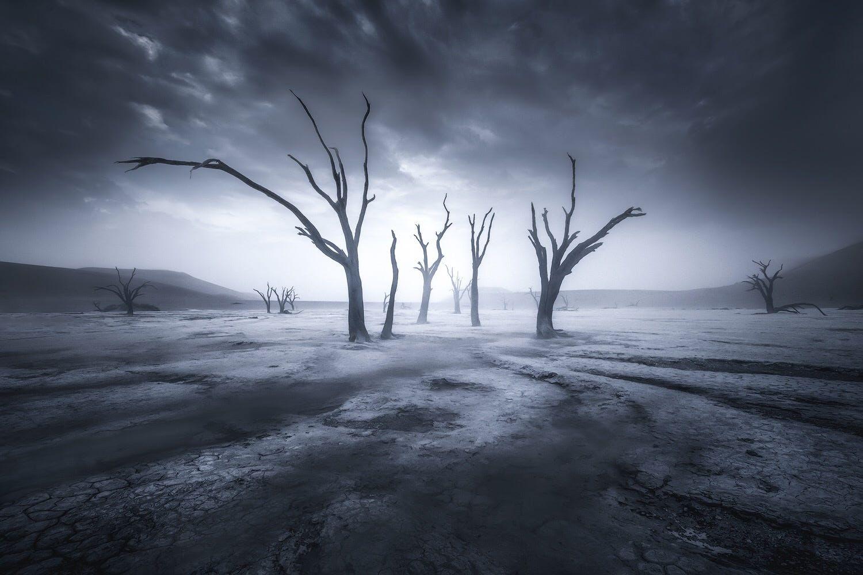 Relic Of The River 500px Landscape Dark Landscape Landscape Photography