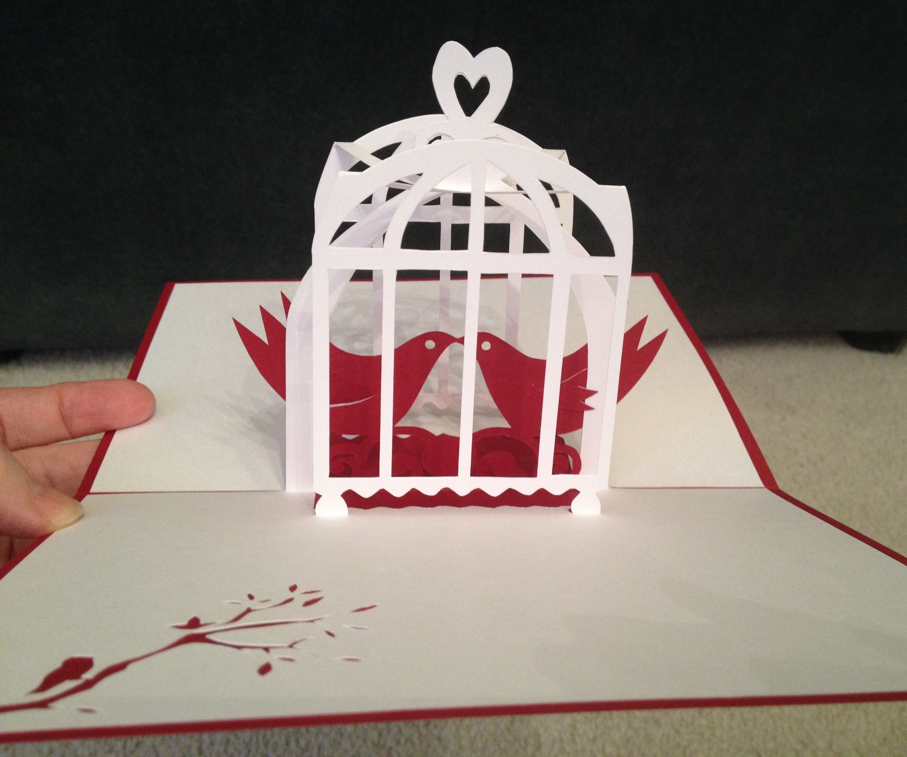 Bird Cage Pop Up Card Template From Cahier De Kirigami No 16 Pop Up Cards Pop Up Card Templates Kirigami Patterns