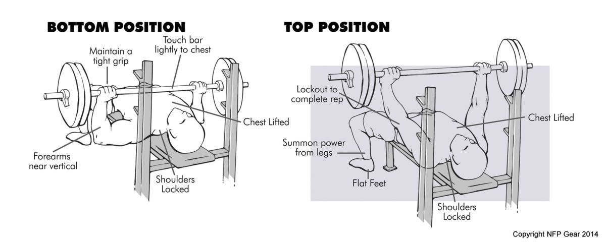 Proper Bench Press Form Diagram NFP Gear | Fitness | Pinterest | Bench