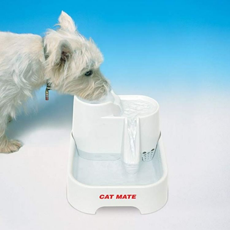Pet Mate Cat Mate Drinking Water Fountain Dog Water Fountain Drinking Water Fountain Dog Treat Toys