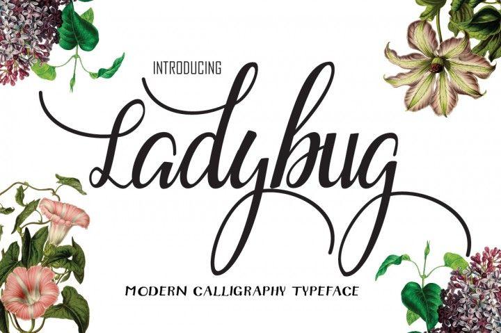 Ladybug fonts ladybird and brush script