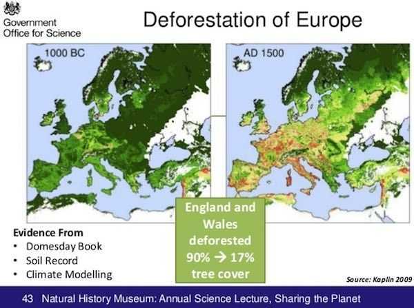 Image result for ancient european deforestation map | Deforestation,  Nature, Natural history