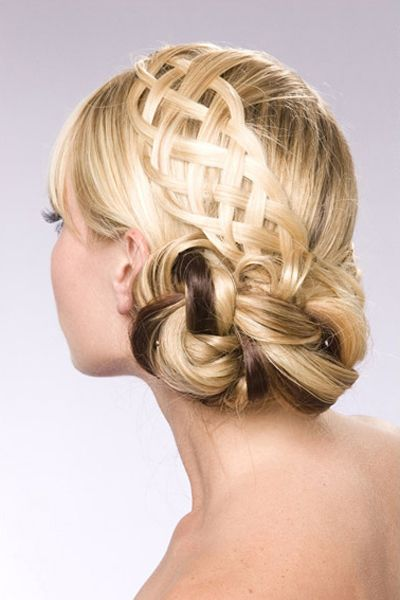 Beautiful Braided Hairstyle Ending with a Bun