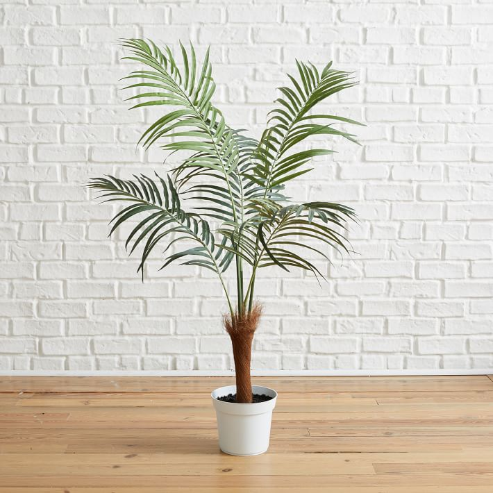 faux potted fan palm tree 4 in 2020 fan palm palm on sweet dreams for your home plants decoration precautions and options id=91602