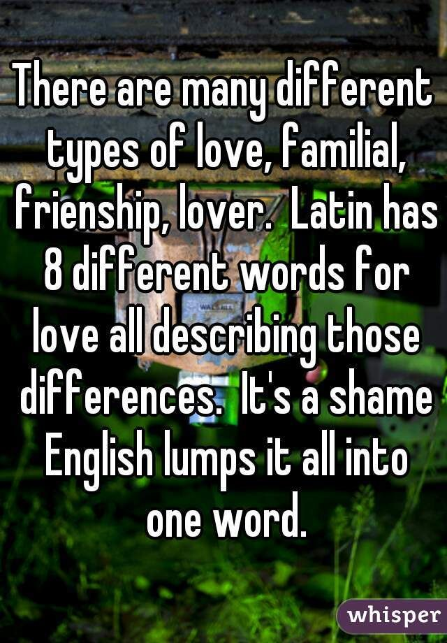 Latin for soul mate