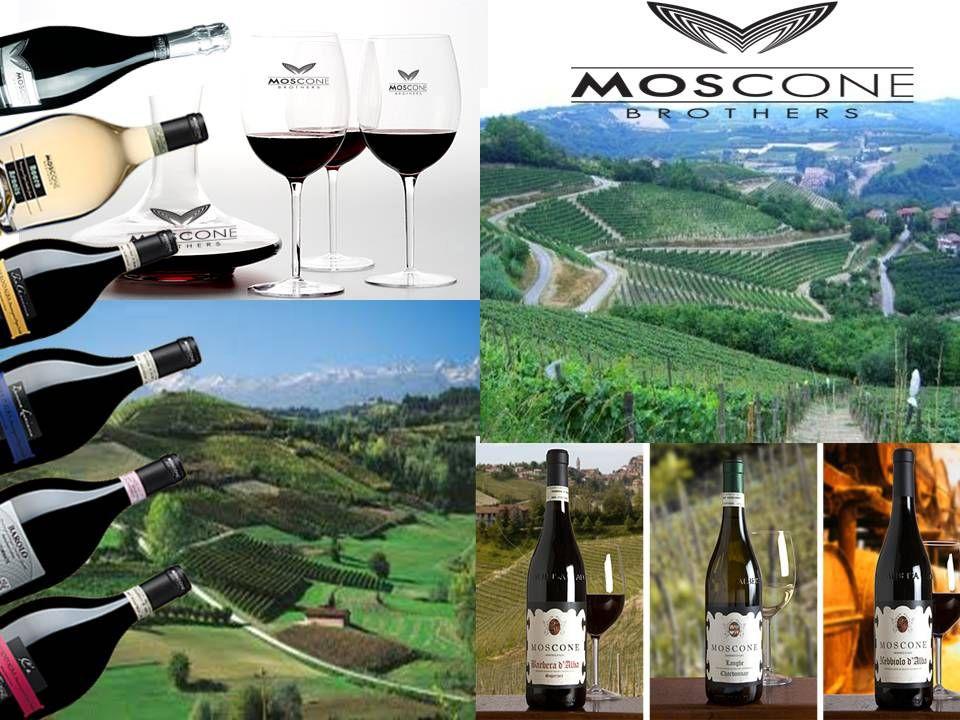 Somos productores, importadores y distribuidores directos de los VINOS MOSCONE. Ofrecemos los mejores precios en vinos  Italianos .