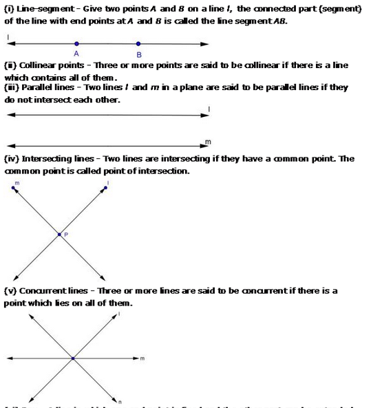 Introduction To Euclid S Geometry Rd Sharma Class 9 Solutions Euclid Geometry Solutions Euclid