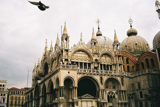 Venice- so many pigeons!  Look one is even in this picture!
