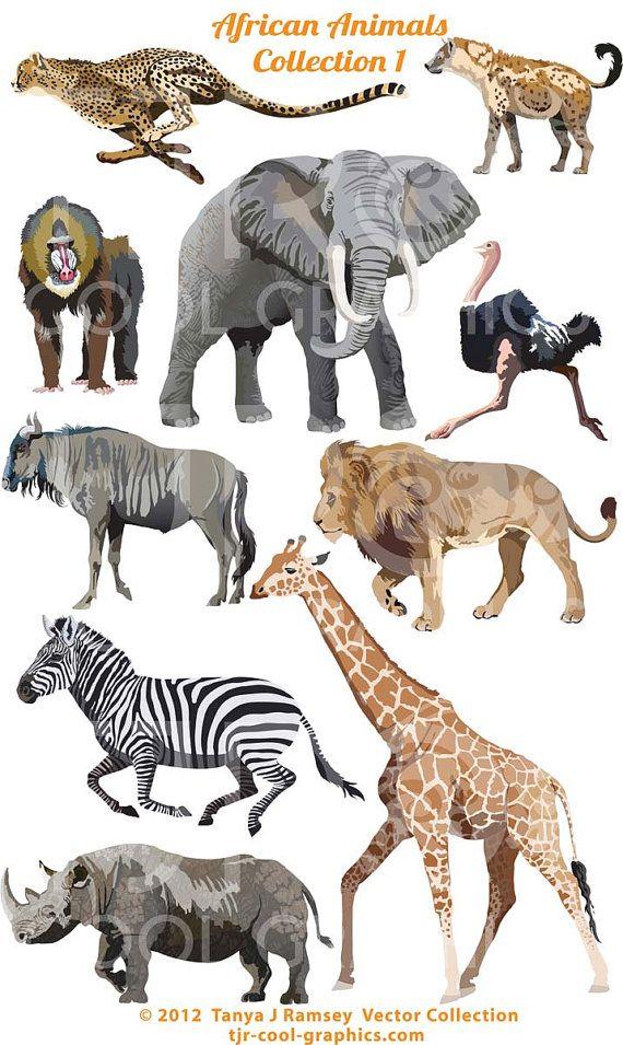 African Animals Clipart Svg Clipart Png Elephant Clipart Ostrich Cheetah Lion Giraffe Mandrill Wildebeest Zebra African Animals Animal Clipart Animal Facts