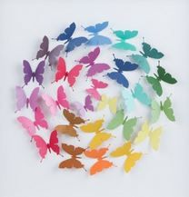 http://www.templeandwebster.com.au/40-x-40cm-framed-ball-of-rainbow-butterflies-1.html