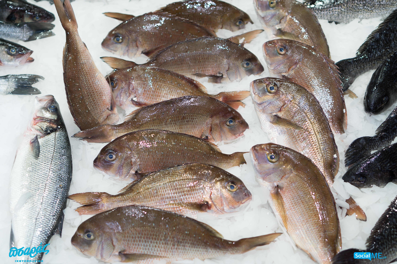 ραντεβού με πολλά ψάρια