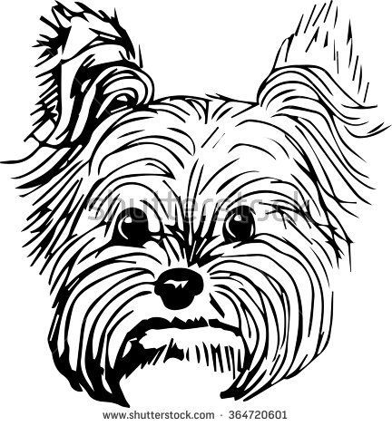 Yorkshire Terrier dog vector illustration. Hand drawn small dog ...