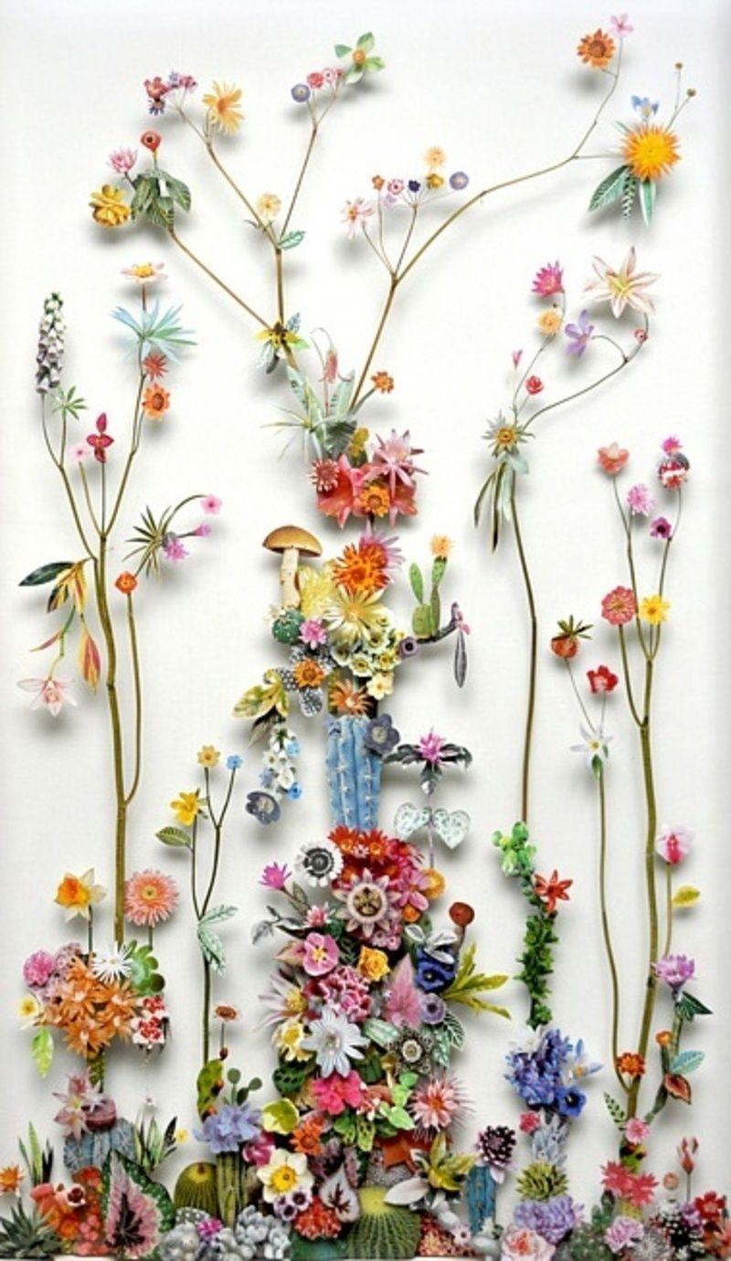Pressed Wildflowers Dried Stems Paper Cutouts Anne Ten Donkelaar
