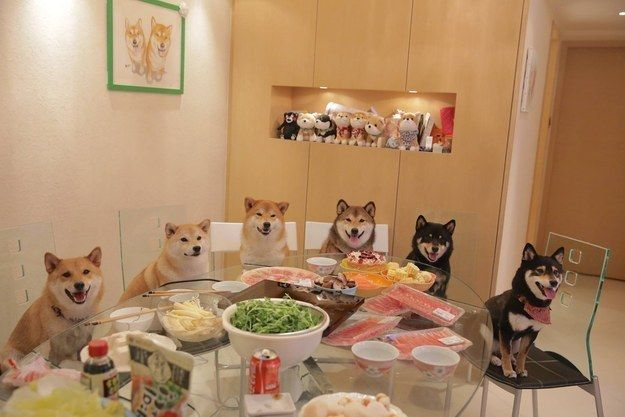 """""""…we always remember the importance of gathering around the table together!"""" 