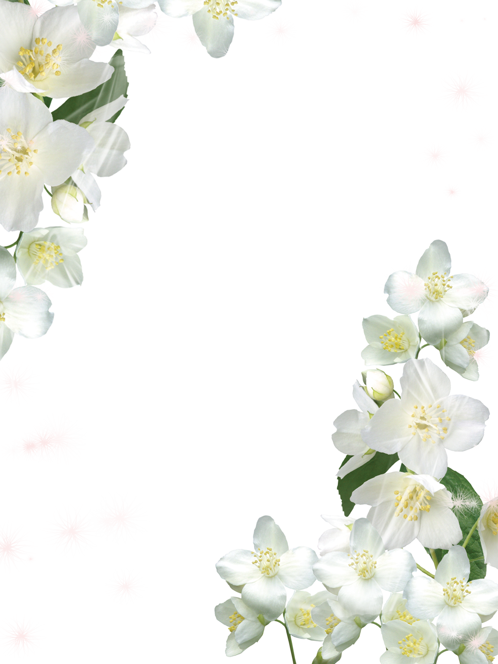 Transparent White Photo Frame with White Flowers White