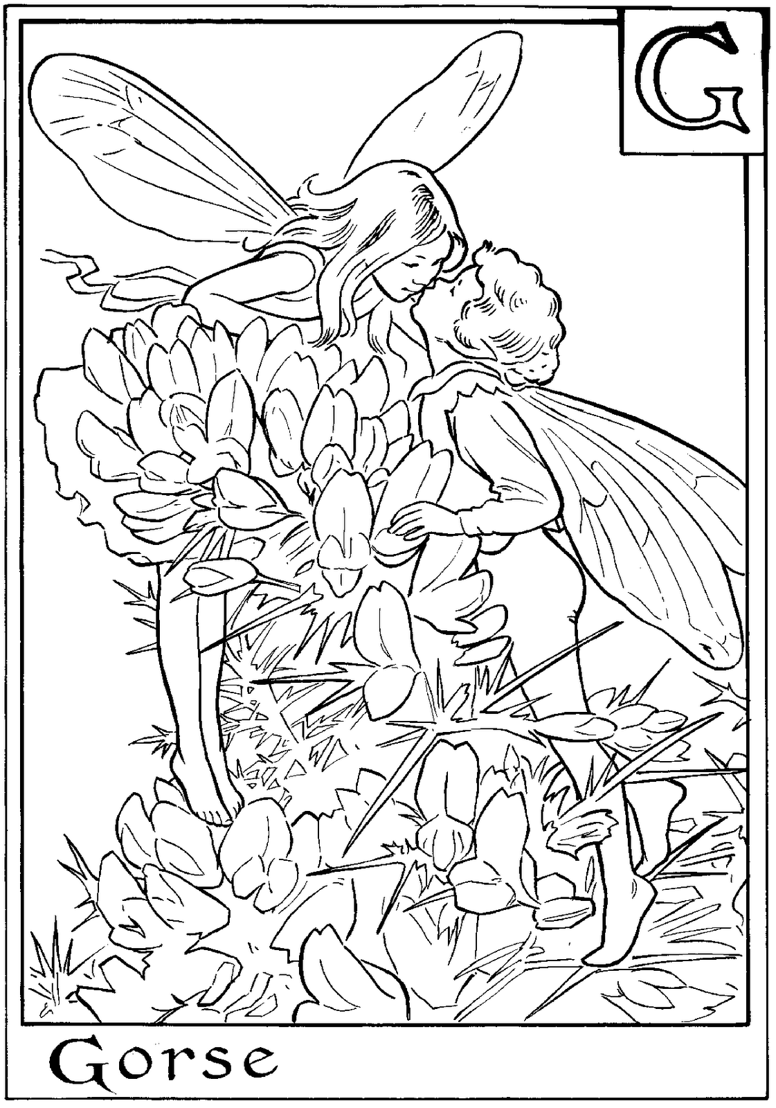 FAIRY COLORING PAGES | Add some Color.. | Pinterest | Fairy, Flower ...