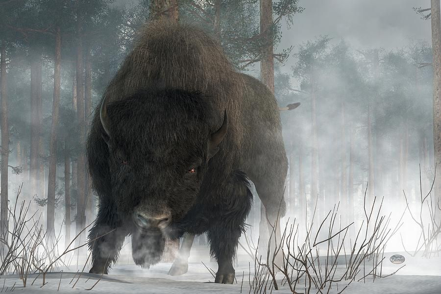 Bison Digital Art - Spirit Of Winter by Daniel Eskridge kK