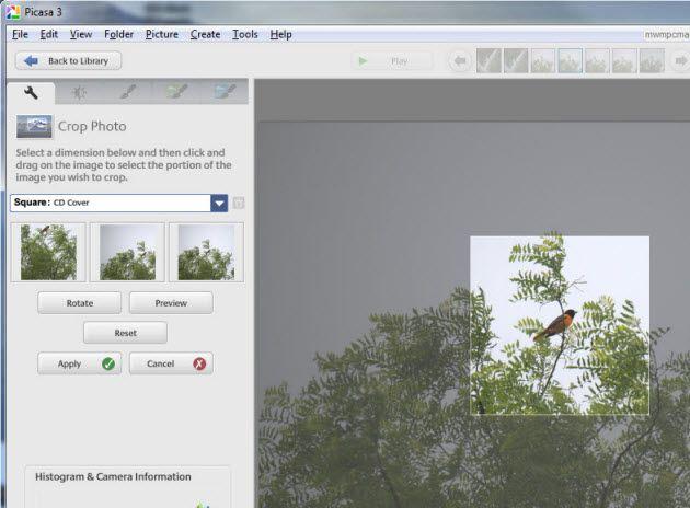 dreamlight photo editor free download keygen