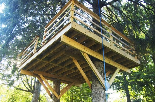 6 Ways To Make Your Tree House Safer   Salter Spiral Stair