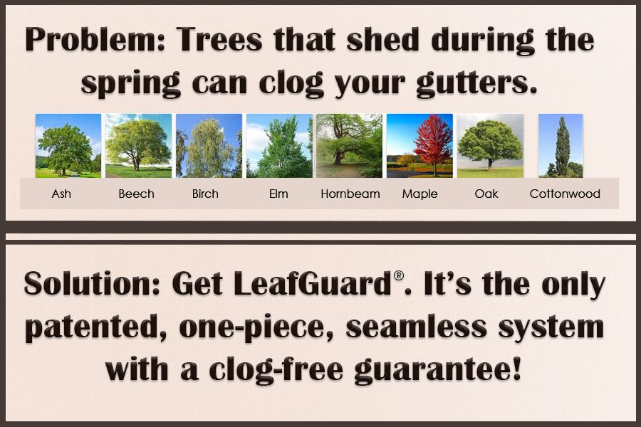 Park Art My WordPress Blog_How To Clean Rain Gutters Without A Ladder