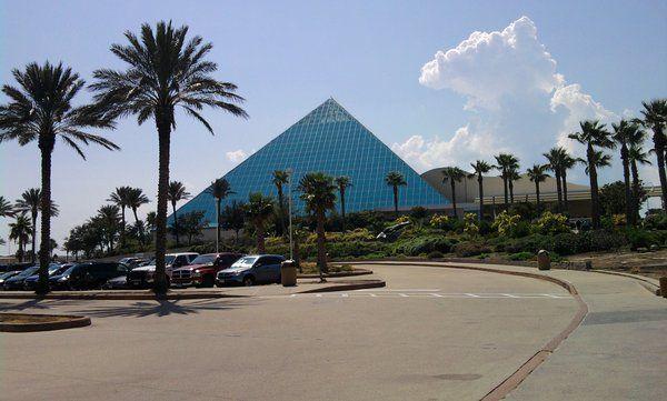 Aquarium In Galveston Texas Usa Summer Tradition