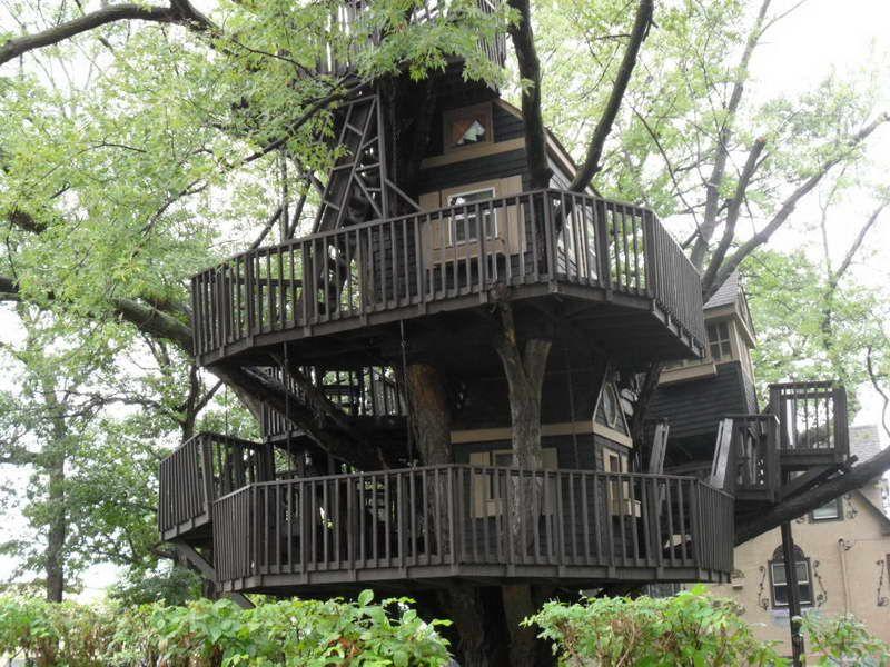 Really Cool Tree Houses 35 really cool tree houses - random - coolest galleries | cool