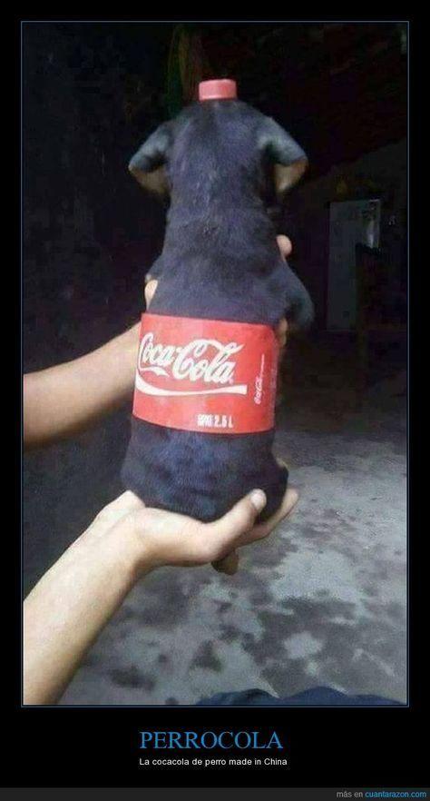 Coca Cola Para El Cabello Para Que Sirve Perrocola La Cocacola De Perro Made In China Perros