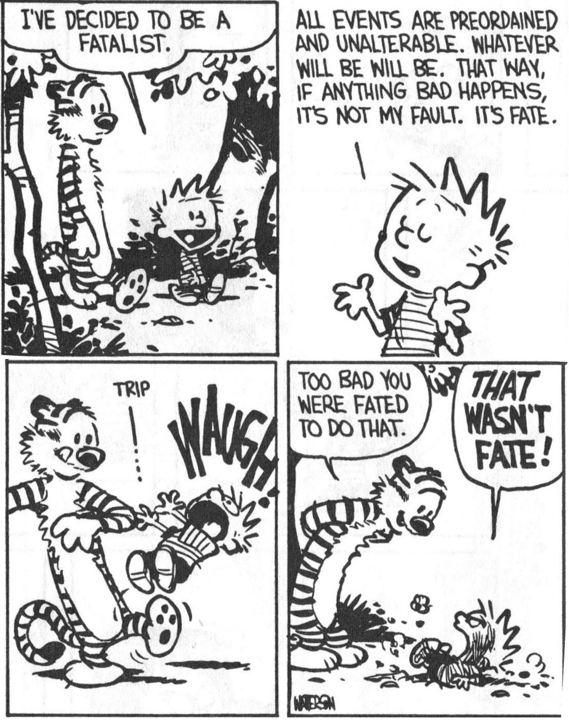 Calvin And Hobbes On Fatalism Calvin And Hobbes Comics Calvin And Hobbes Calvin And Hobbes Quotes