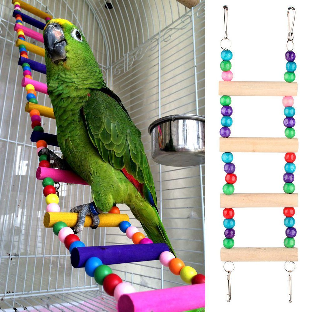 Rainbow Wooden Parrot Ladder Small African Grey  Cockatoo Conure Macaw