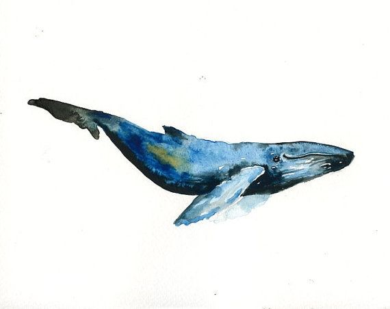 HUMPBACK WHALE Original watercolor painting 10X8inch
