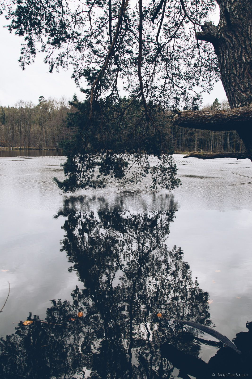 — lakeside   germany by BradTheSaint