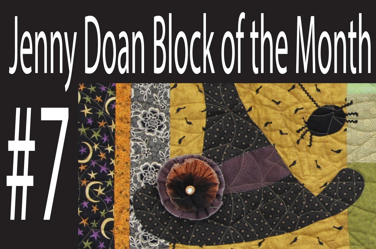 Jenny Doan Block of the Month (BOTM) #7- Missouri Star Quilt Company